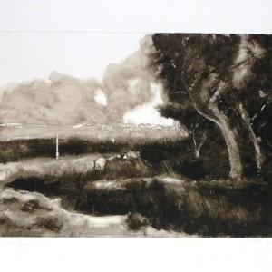 P9_Zichron, 2012, Monotype, plate 35X25